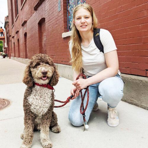 chicago dog walker