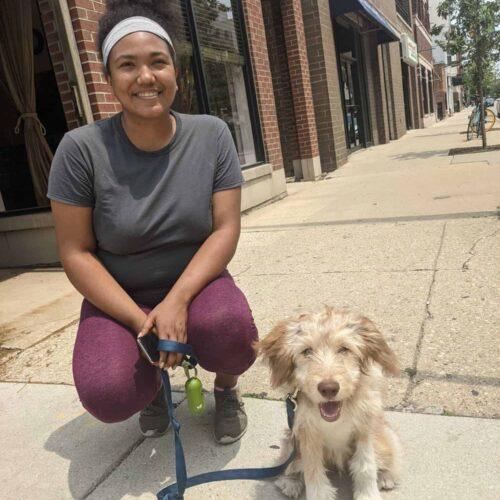 Chicago Dog Walkers